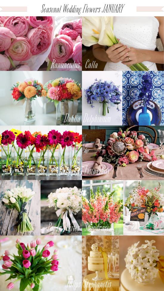 Wedding Flowers In Season In January : Seasonal wedding flowers november image search results