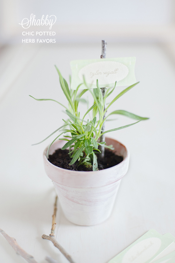 DIY herb potted favor tutorial