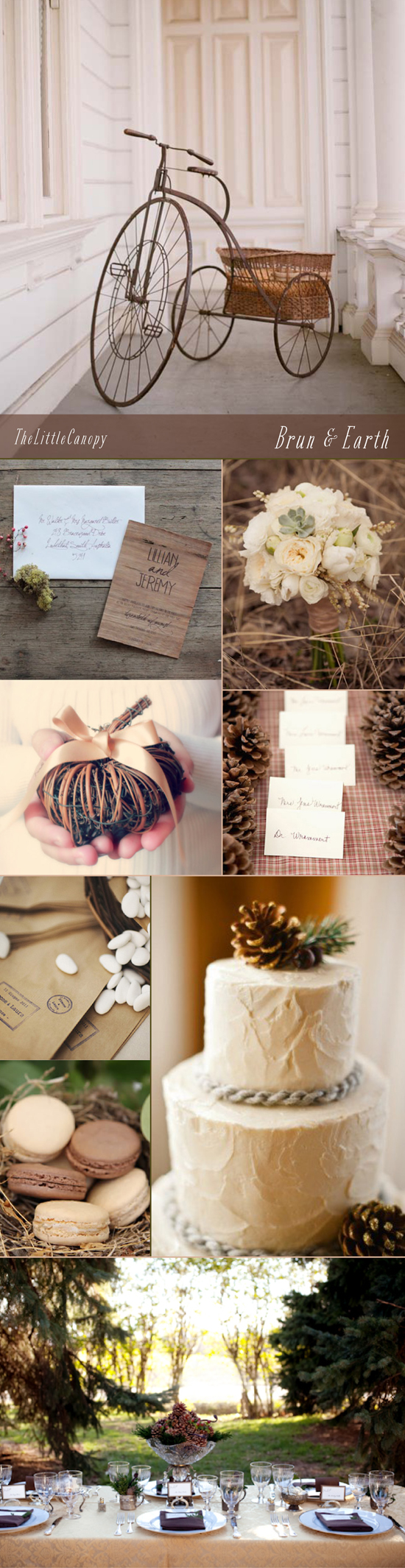 A wedding inspiration board for a quiet brown and earthy color theme mixed with some rustic nature
