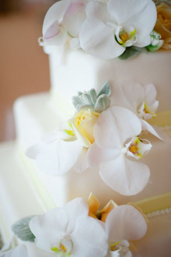 wedding flowers orchids